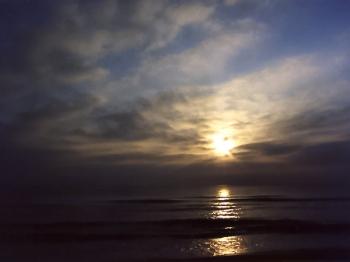 Clarejar en la platja de Piles. Fotògraf: Enrique F. de la Calle